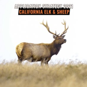 APPLICATION STRATEGY 2021: California Elk and Sheep