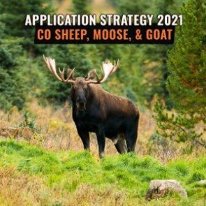 APPLICATION STRATEGY 2021: Colorado Sheep, Moose, and Mountain Goat
