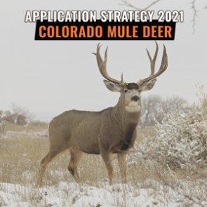 APPLICATION STRATEGY 2021: Colorado Mule Deer