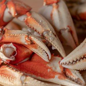 Wild Game Friday - Mushroom & Crab Chowder