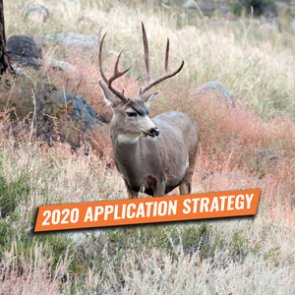 APPLICATION STRATEGY 2020: Oregon Deer