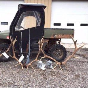Colorado man poaches two elk