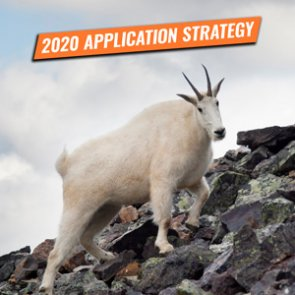 APPLICATION STRATEGY 2020: Washington bighorn sheep, moose, and mountain goat