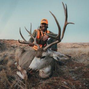 Mule Deer Breakdown: Month by Month
