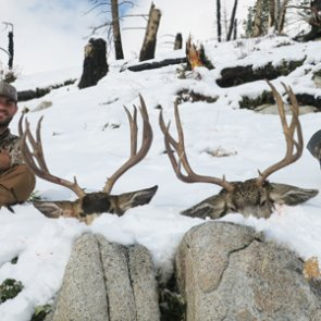 Cold temps and fresh snow was the perfect recipe for an Idaho mule deer hunt