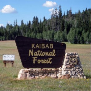 Lawsuit targets big game retrieval in the Kaibab National Forest