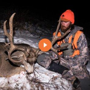 6 tactics for hunting mule deer bucks in the rut