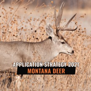 APPLICATION STRATEGY 2021: Montana Deer