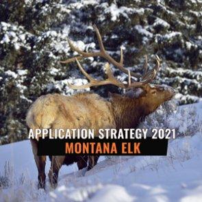 APPLICATION STRATEGY 2021: Montana Elk