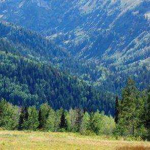 Oklahoma Representative Proposes Bigfoot Hunting Season