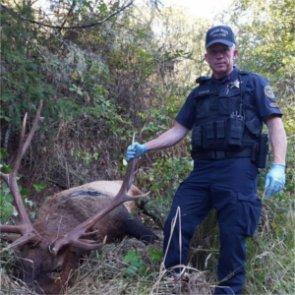 Oregon asks public for help in nabbing poacher