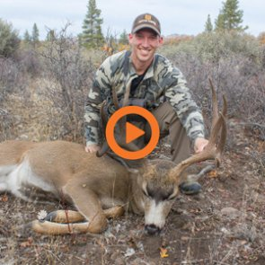 Oregon Deer and Elk Application Strategy — Q&A Video