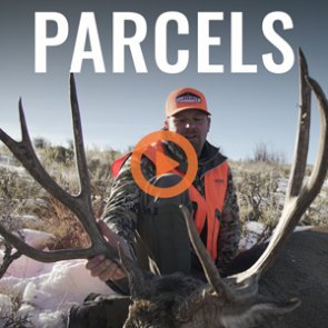 PARCELS - A Colorado 4th Season Rifle Mule Deer Hunt