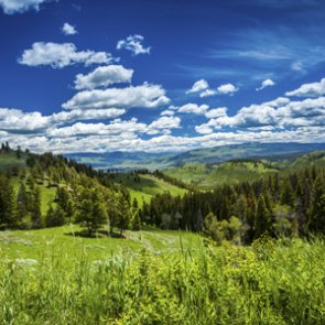 House passes massive conservation act for positive gain