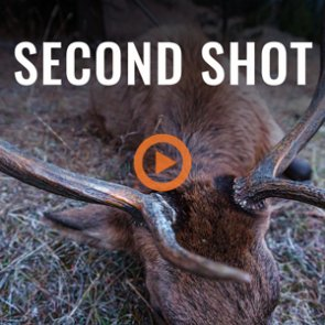 SECOND SHOT - A Wyoming Rifle Elk Hunt