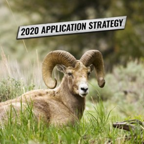 APPLICATION STRATEGY 2020: Oregon Bighorn Sheep and Mountain Goat