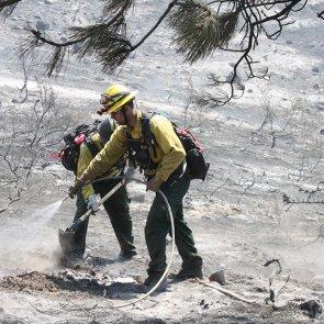 Winter range destroyed by Washington fire
