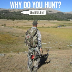 theBULLET - 22 great responses: Why do you hunt?