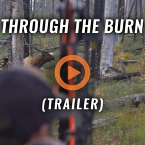 THROUGH THE BURN (Trailer)