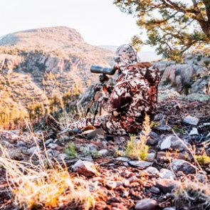 Spot and stalk bowhunting — to bed or not to bed