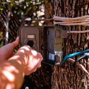 Are trail cameras the death of hunting?