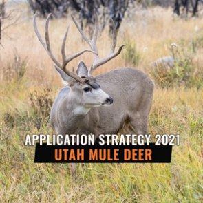 APPLICATION STRATEGY 2021: Utah Mule Deer