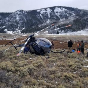 Elk causes helicopter to crash