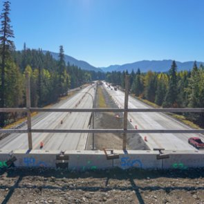 Washington's new wildlife crossing provides safety for elk, mountain lions and more