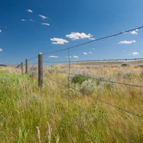 New legislation opens up inaccessible federal and state lands in Wyoming