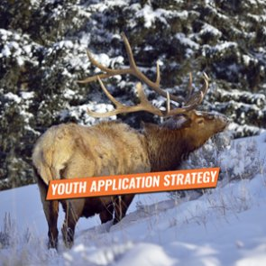 YOUTH APPLICATION STRATEGY — Take Your Kids Hunting Part 3