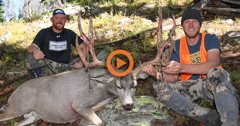Three friends pursue high country mule deer in Wyoming