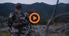 Utah Elk and Deer Application Strategy — Q&A Video