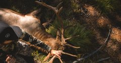 When to give up on a hunting spot