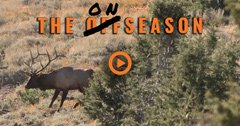 THE ONSEASON — Season 2 — Episode 8