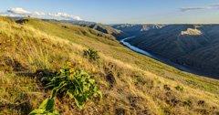 Partnership creates permanent conservation easement for Idaho's bighorn sheep