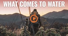 WHAT COMES TO WATER - An Arizona OTC archery Coues deer hunt